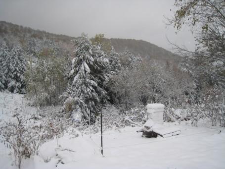 Ondergesneeuwde bijen kast